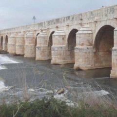 INFO >> Alteraciones en todas las líneas interurbanas por obras en M-305 sobre el Puente Largo